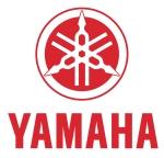 Új Yamaha F20G motor