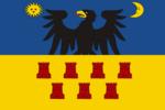 Zászló Erdély 40x60