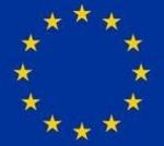 Zászló eu 40x60